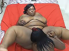 Black BBWs get their chocolate pussies dripping wet as they use toys to get them cumming