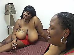 Black BBW sluts Mz. Caution and Miz Behave get nasty in the bedroom when they have hot black BBW lesbian sex.Mz. Caution, Miz Behave